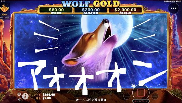 Wolf Goldの美しい狼
