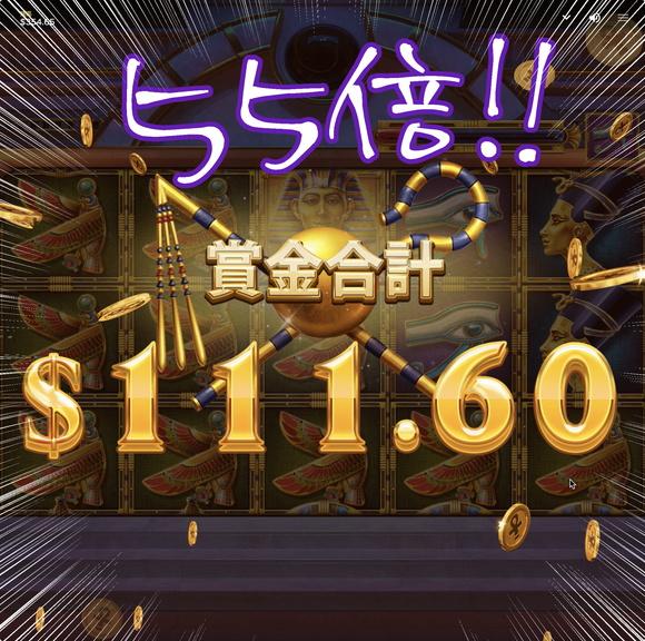 WINGS OF RAで$111.60