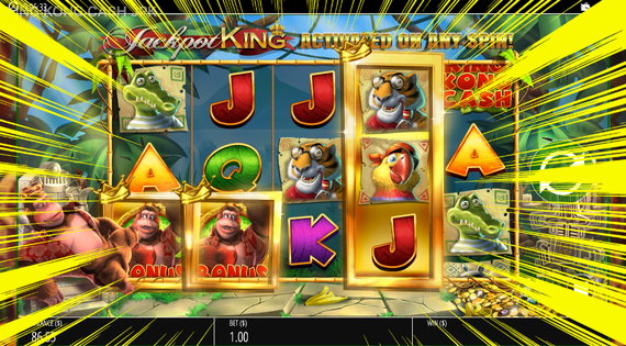 KING CONG CASH フリスピチャンス