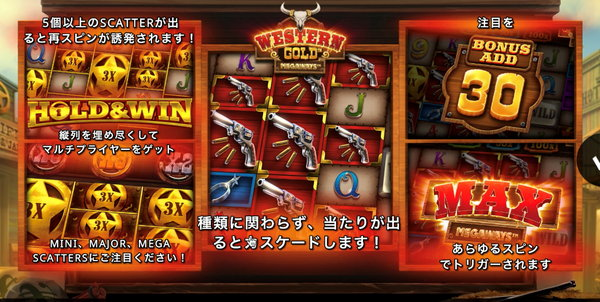 WESTERN GOLD 取扱い説明