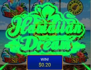 Hawaiian Dream リスピン