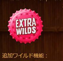 EXTRA WILDS(追加ワイルド機能)