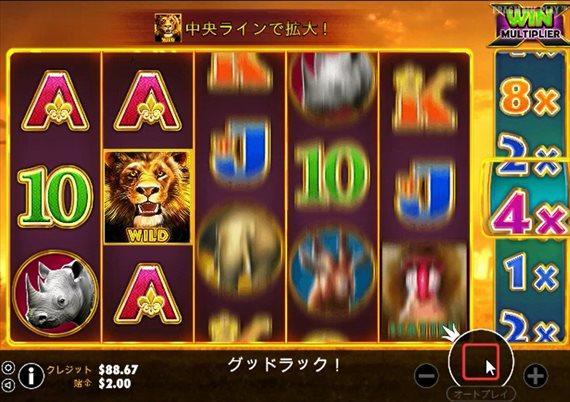 ワイルド図柄のライオン