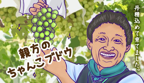 貴乃花のちゃんこブドウ