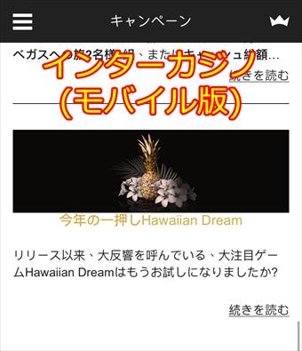 インターカジノのHawaiian Dream(ハワイアン・ドリーム)