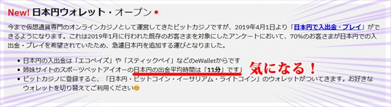 ビットカジノ日本円ウォレットデビュー
